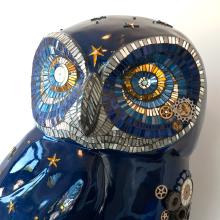 Freshlook-Fundraiser-Bowel-Cancer-Dorothy-House-Hospice-Owl